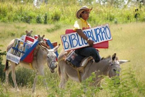 The Book Burro